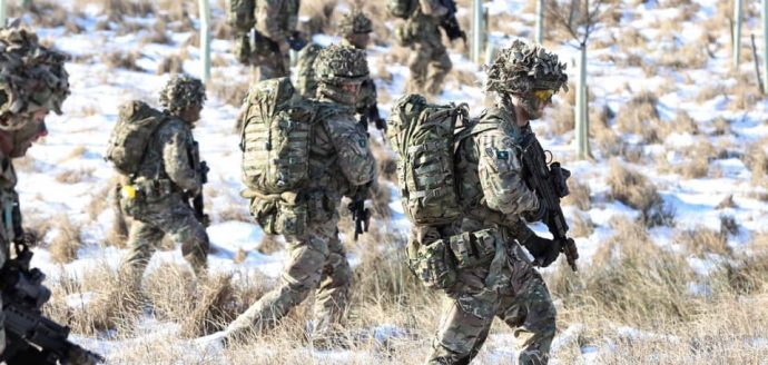 Army reserves